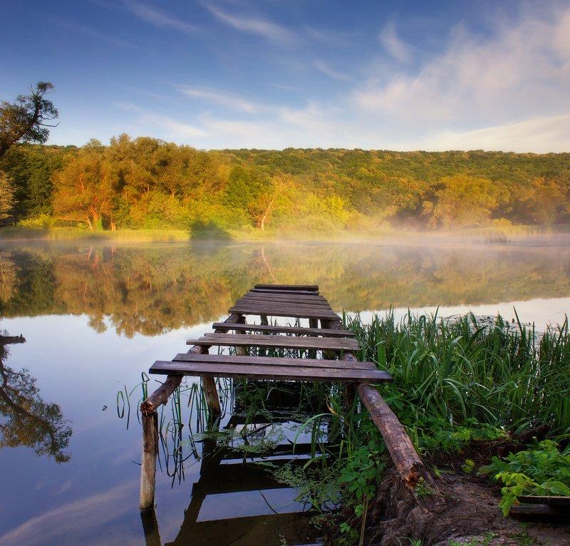 река, сижа, утро, лес, берег, природа, донец, харьков Сижаphoto preview