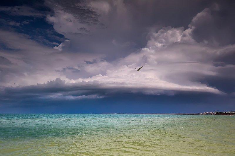 Black sea, Crimea, waves, seagull, storm, dramatic clouds Штормовое небо над Черным морем. Крымphoto preview