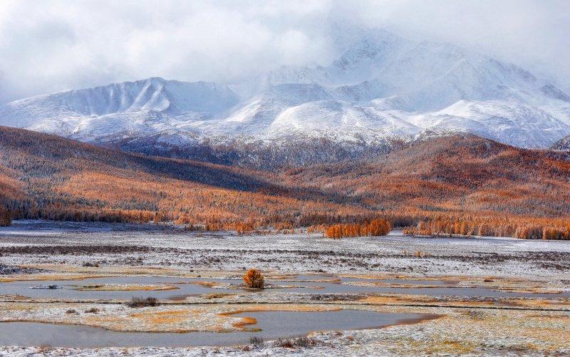 алтай, горный алтай, горы, сибирь, джангыскёль, плато ештыкёль Плато Ештыкёльphoto preview
