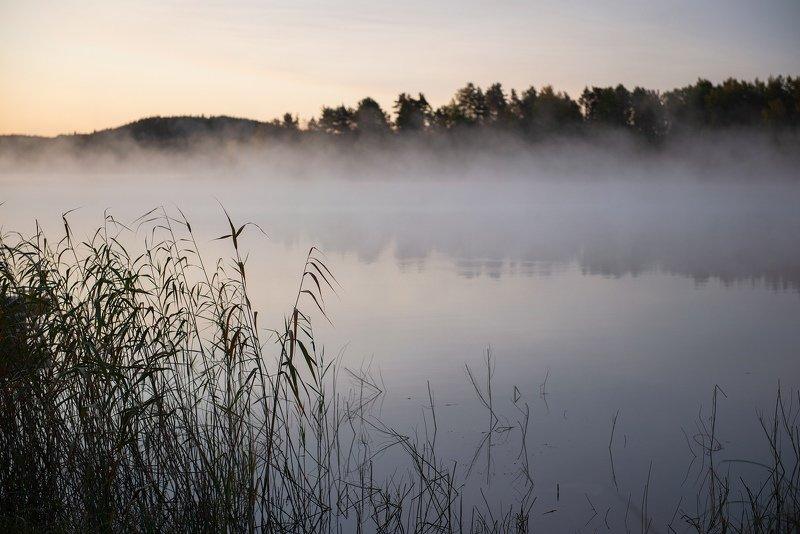 Карельский туманphoto preview