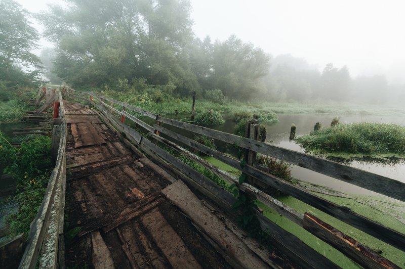 филипповское, шерна Утро в Филипповскомphoto preview