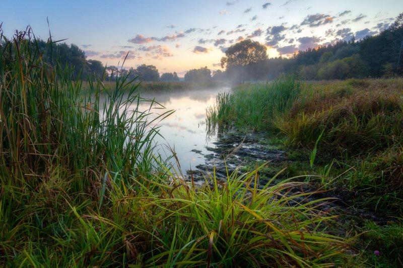 волчья, туман, утро, рассвет, река, fog, morning, dawn, river Туманное утро на реке Волчьяphoto preview