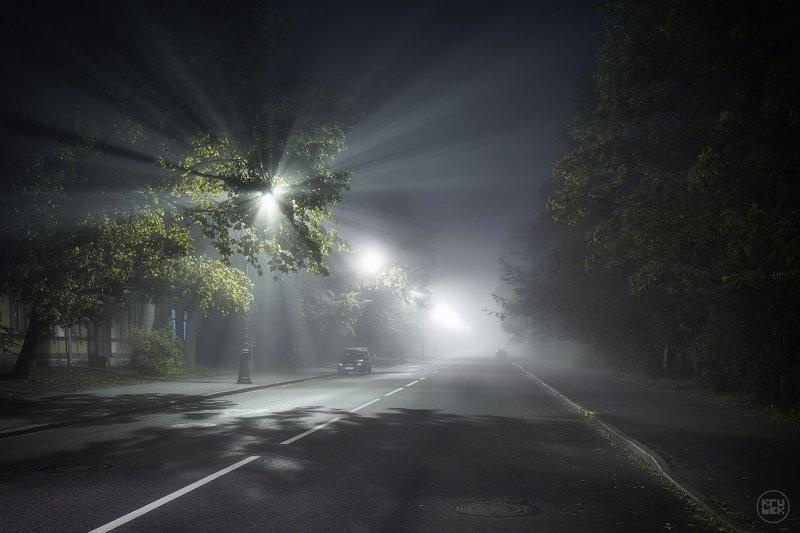пушкин, ночь, туман, улица 03:00photo preview