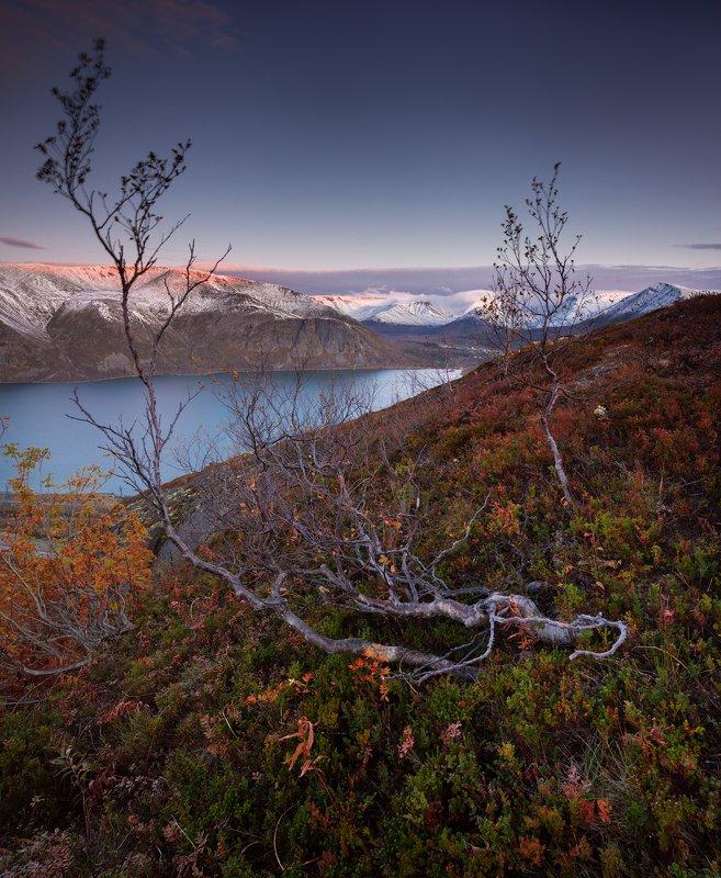 пейзаж,хибины,снег,осень,горы,кольский,озеро Первый снегphoto preview