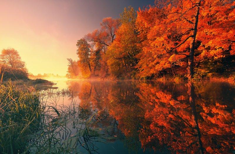 Шернская осень ...photo preview