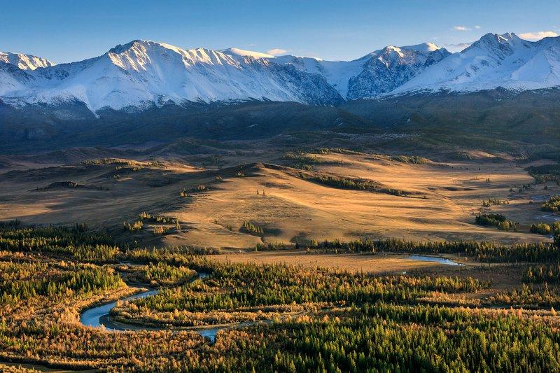 mountain, mountain range, Altai, landscape, river, forest, peaks, steppe Golden autumn. Altaiphoto preview