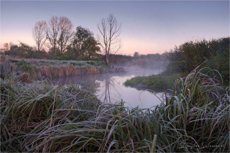 утро, рассвет, туман, осень, осенняя, осенняя пора, пейзаж, дерево, река, тишина, сумерки, замирание, отражение, сказка Утренняя тишина у рекиphoto preview