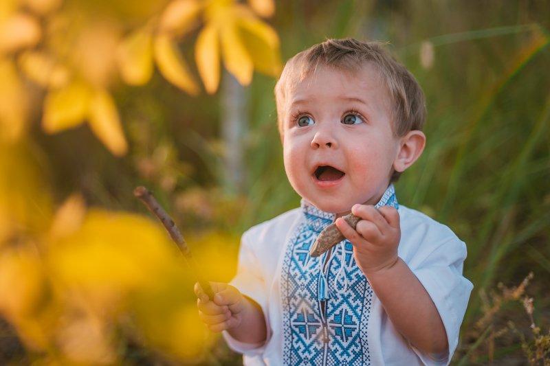 вышиванка, малыш, ребенок, маленький, осень, радость, удивление Боренькаphoto preview