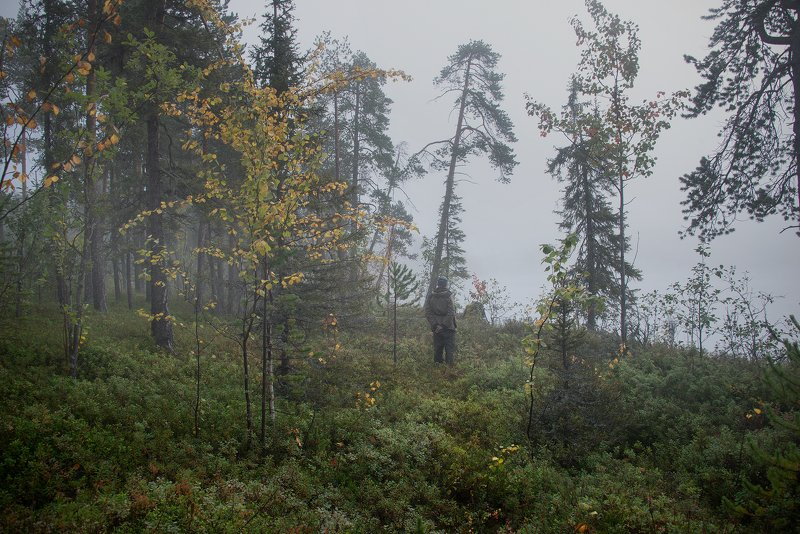 Туман, Север, Кольский В туманеphoto preview