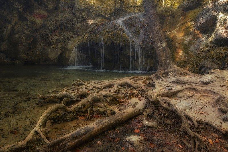 В осеннем лесу.photo preview