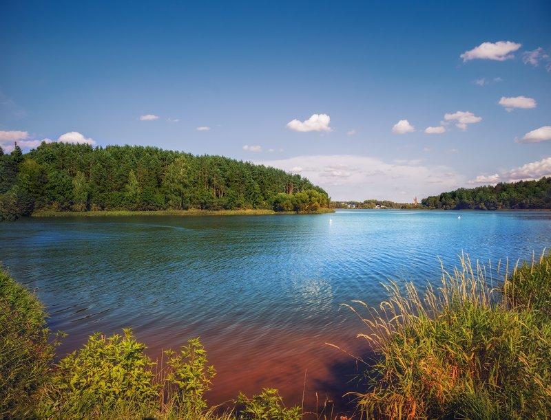 лето, озеро, Озеро Птичьphoto preview