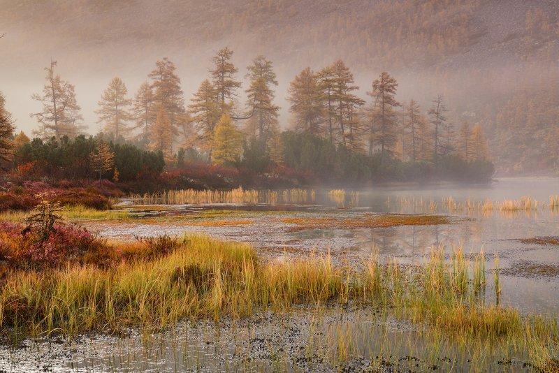 озеро джека лондона Туманное... фото превью