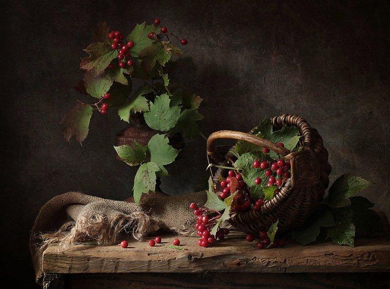 калина, натюрморт, корзинка, ягоды, осень Ягода калинаphoto preview
