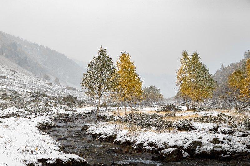 туманно-снежный Архызphoto preview