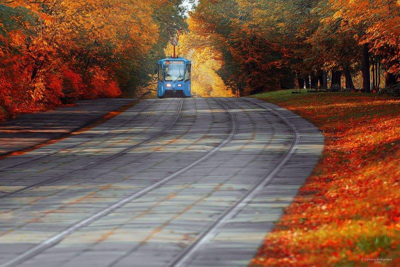 Трамвай в Сокольникахphoto preview