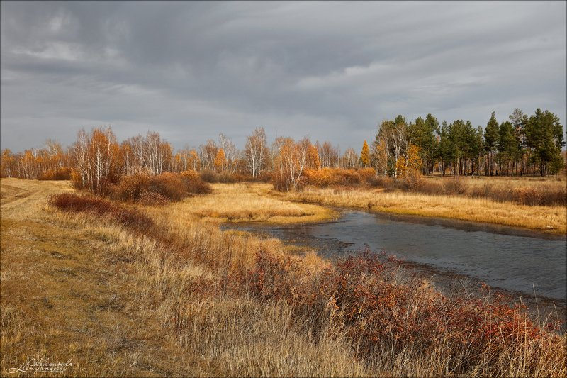 забайкальский край, чита Старичное озерцо в пойме р. Читинкиphoto preview