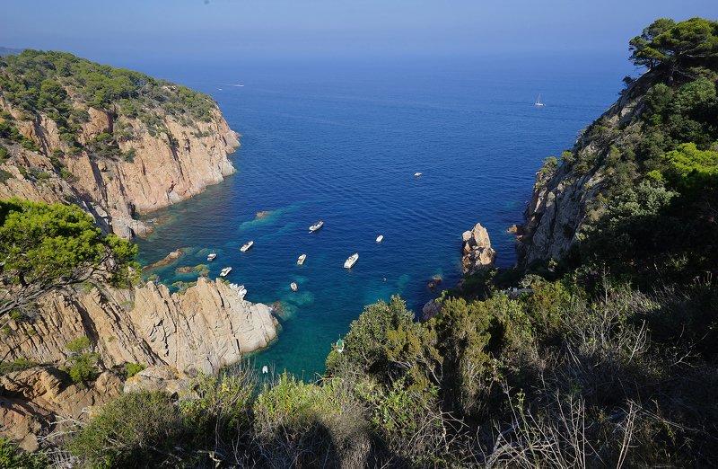 каталония, аигуа блава, скалы море, сосны в лагунеphoto preview
