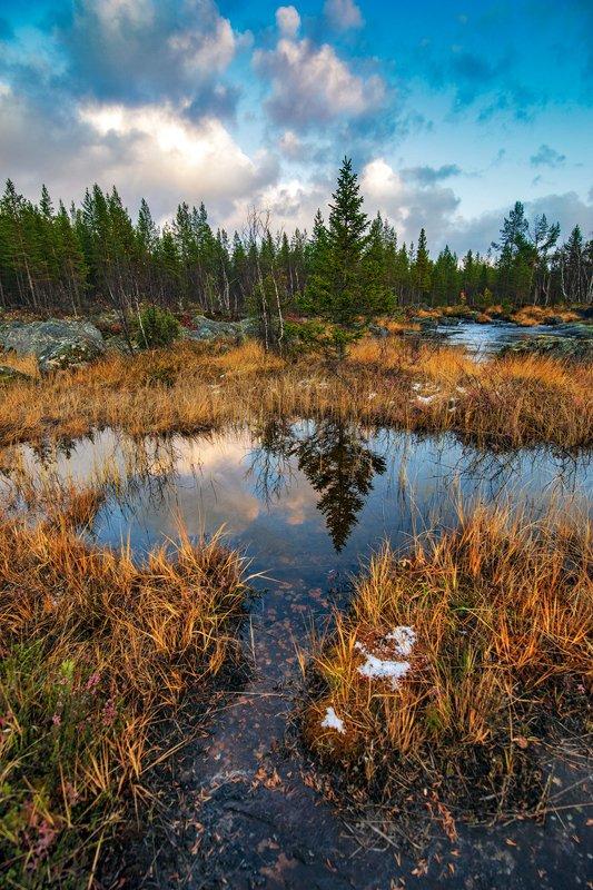 осень Пейзаж с пригоршней снега ...photo preview