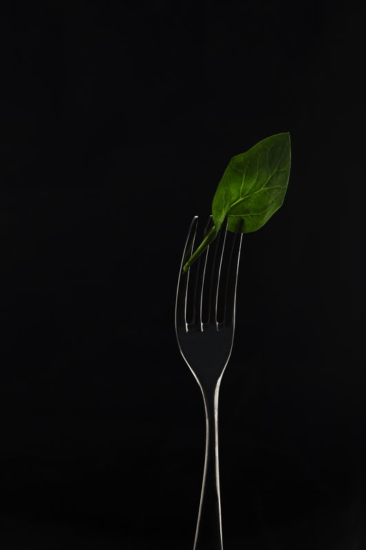 еда, шпинат, вилка, фудфото spinach on the silhouettephoto preview