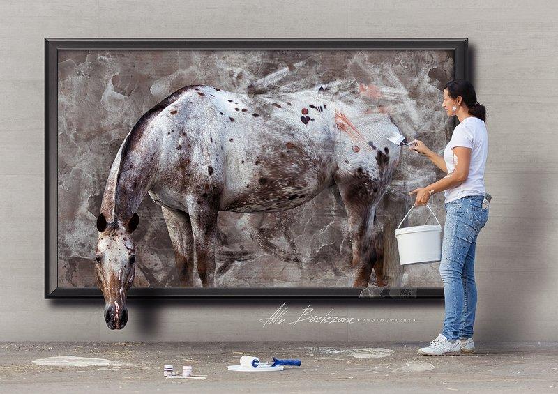 horse, appaloosa, лошадь, аппалуза, портрет, животные, usa Нарисуй свою мечту - и она обязательно станет реальностьюphoto preview