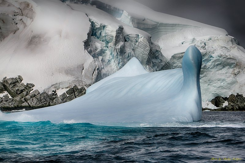 Антарктида 61photo preview