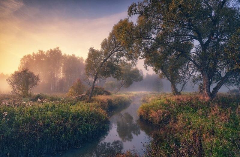 Тихий уголок маленькой реки ...photo preview