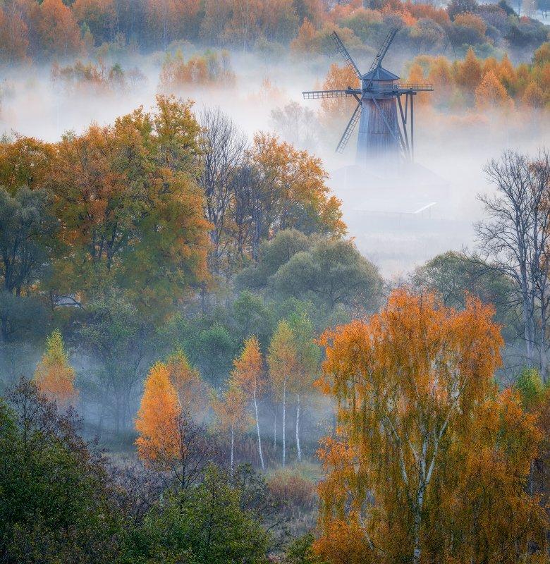 утро, рассвет, природа, туман, река, истра Золото осениphoto preview