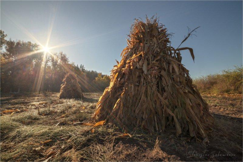 утро, рассвет, туман, осень, осенняя, осенняя пора, пейзаж, солнце, лучи, стог, сено Осень машет нам, привет.photo preview