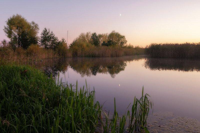 Тишина и лунаphoto preview