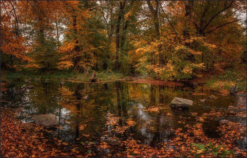 Осень на реке Мыкаphoto preview
