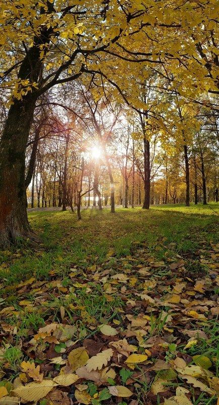 Осенние панорамки!photo preview