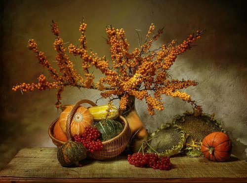 Рыжие дары рыжей осени...