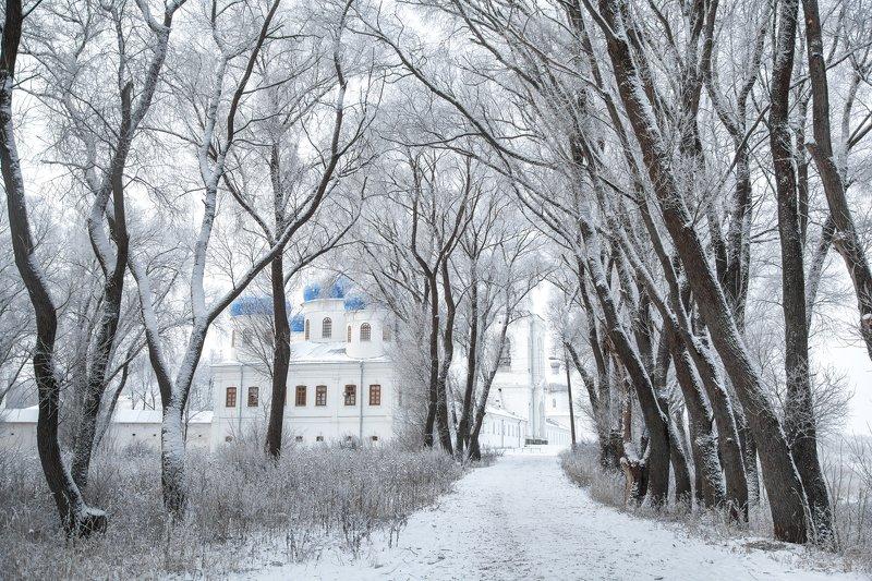 юрьев монастырь, великий новгород, новгород Зима в Юрьевом монастыреphoto preview