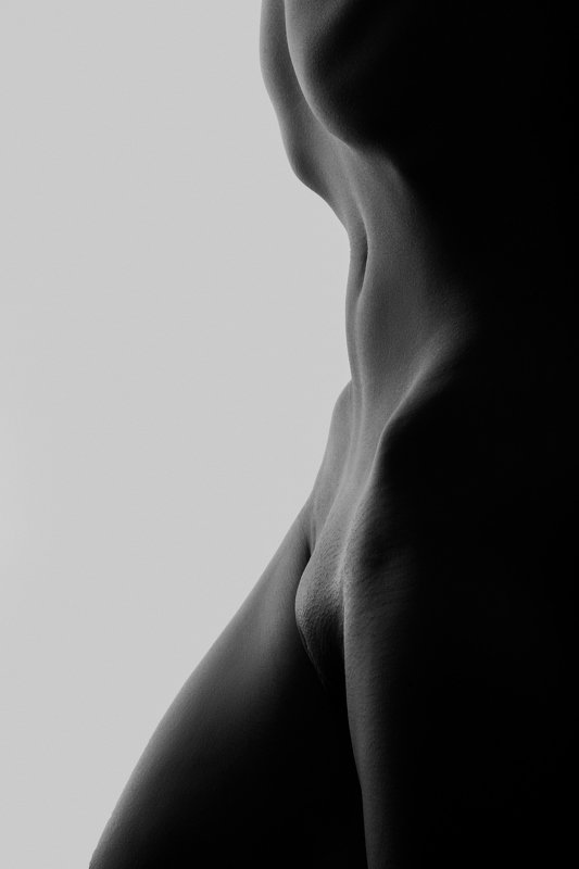 nude, fineartnude, woman, siluet, body Torsophoto preview
