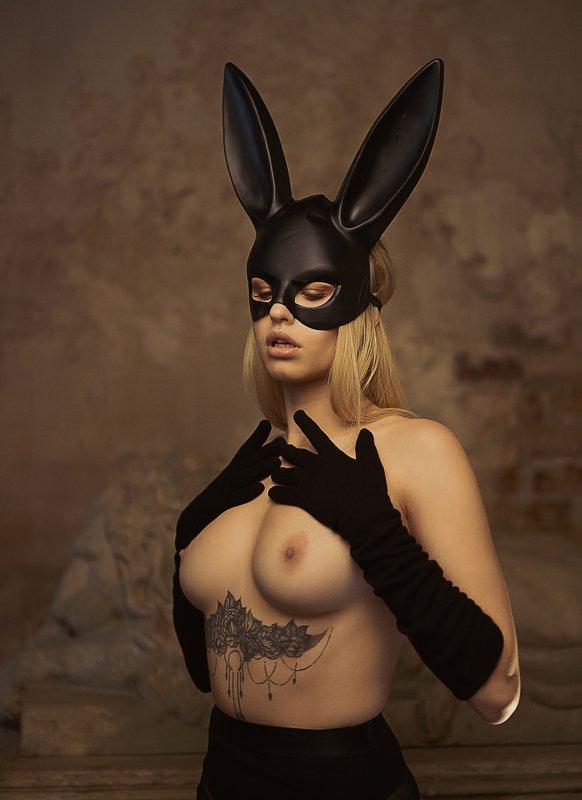 Кролики тоже любят нюphoto preview