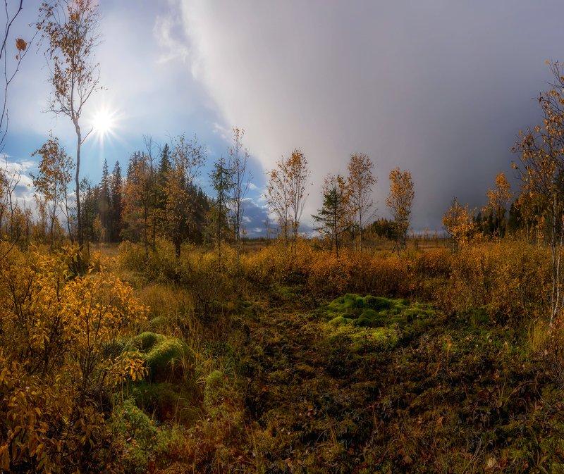 болото, кайф, рассвет ,север ,солнце, свет, закат, облака,  фототур Свет ,цвет, контрастphoto preview