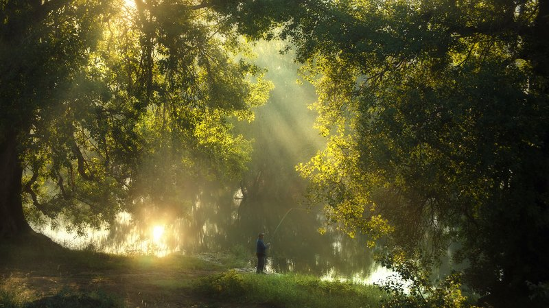 spring landscape nature river fisherman fishing morning misty The lost paradisephoto preview
