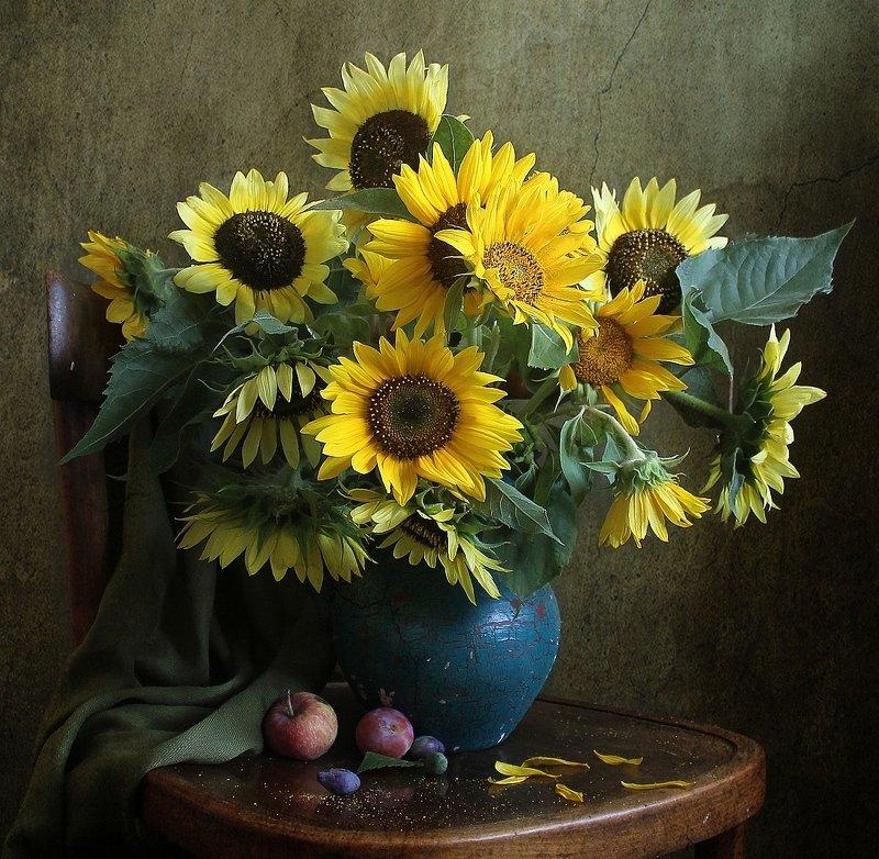 лето,  цветы, натюрморт, марина филатова,подсолнухи Брызги солнечного  светаphoto preview