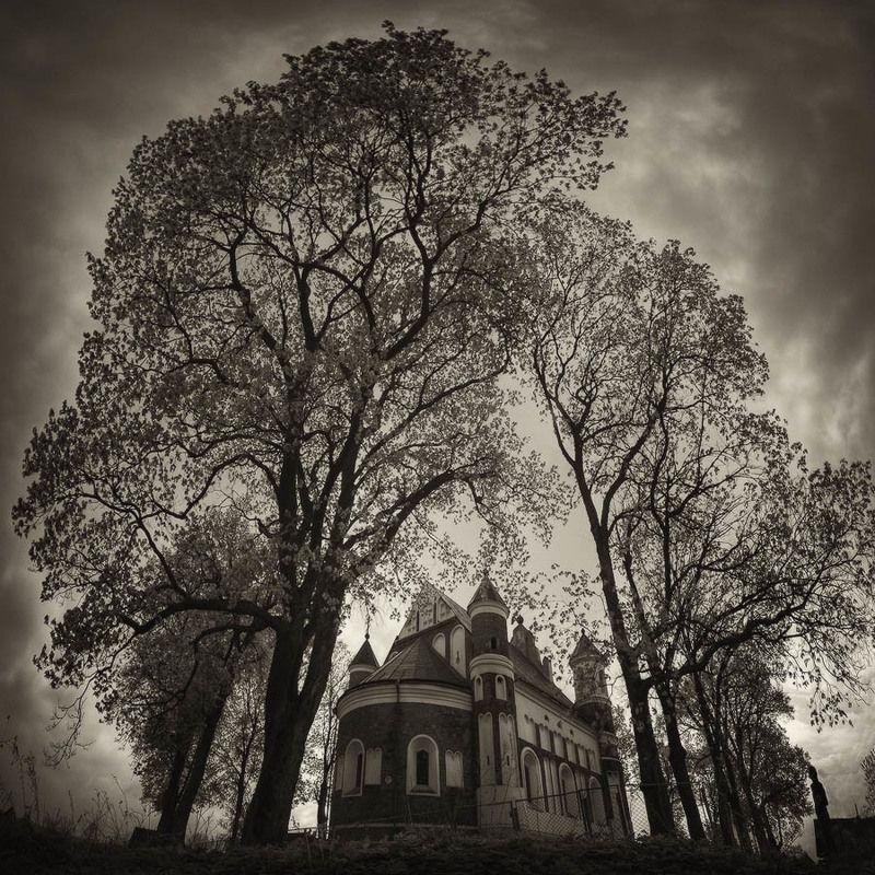 мурованка, церковь, оборонительный, храм, бойницы, деревья Мурованкаphoto preview