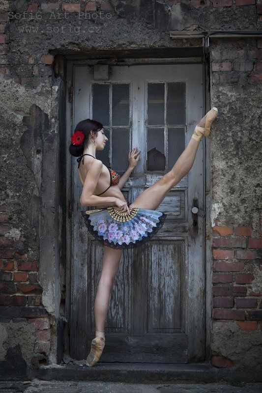 ballet, balet, tanec, dance, sofig, ballerina ...photo preview