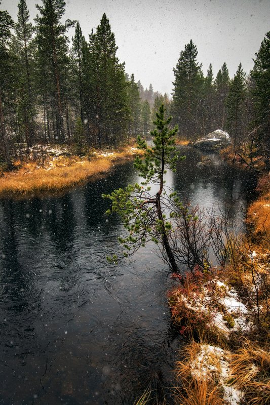 Осени ручей ...photo preview