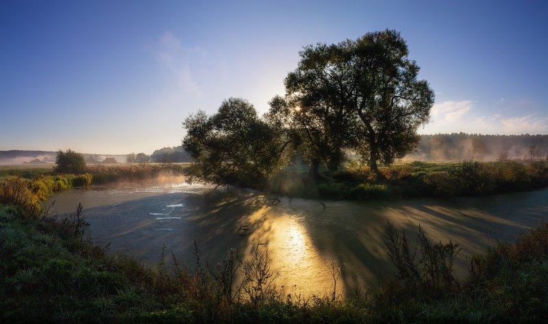 утро, лето, дымка, Про летнее утроphoto preview