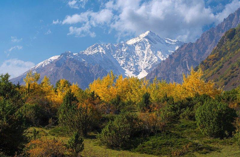 осень, верхняя балкария, кабардино-балкария Краски осениphoto preview