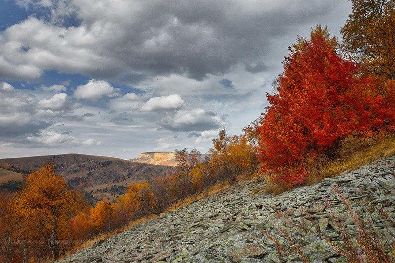 кавказ горы осень плато облака Осенние этюды. №2photo preview
