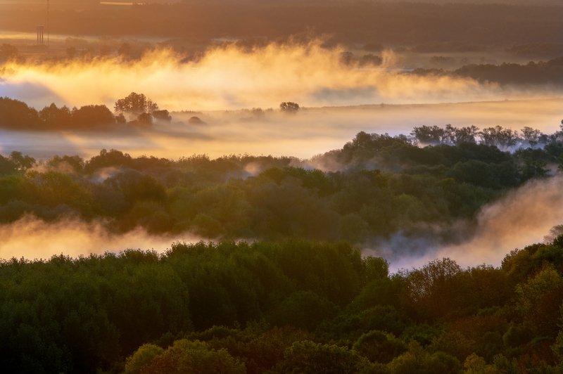 morning, mist, fog, sunlight, sunrise, dawn, river, autumn, landscape, outdoors, утро, туман, свет, рассвет, река, пейзаж Autumn mistphoto preview