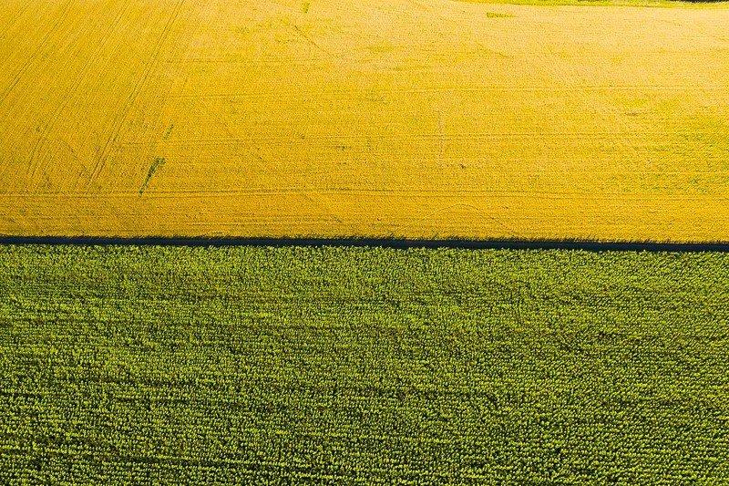 Тамбовская область, поля, коптер, дрон, aerial,  Флаг Караманты (Антиокия) Колумбия в Тамбовских степях photo preview