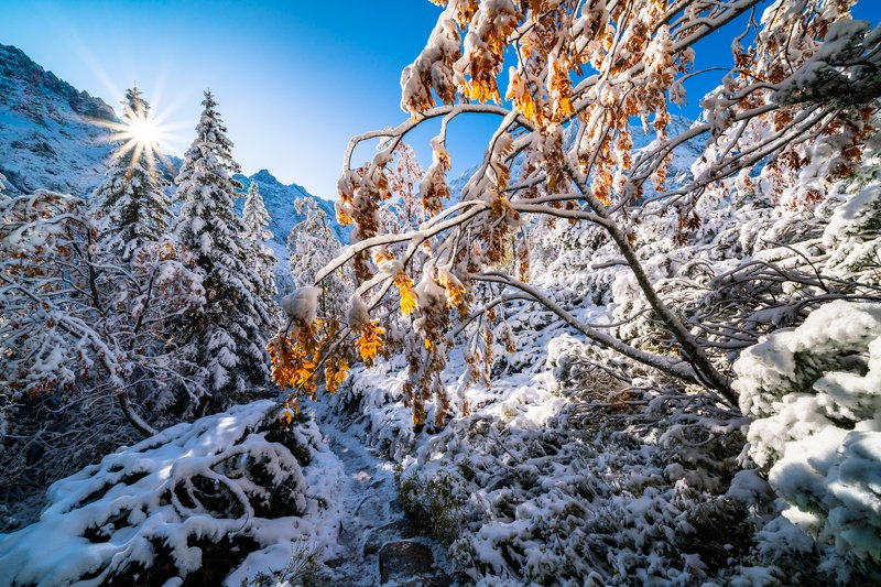 landscape, stream, mountains, morskie oko, zakopane, poland, sun, green, tatry, view, trees, niebo, water, snow Connection of autumn and winter at Morskie Okophoto preview