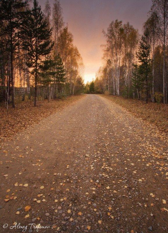 Дорога уходящего солнцаphoto preview