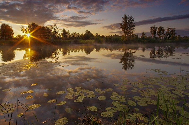 рассвет, утро, свет, вода, озеро, облака, солнце, лучи В утренней тишинеphoto preview