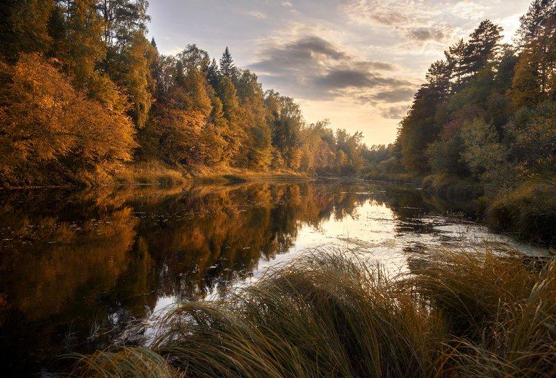 керженец, осень, пейзаж река Осень на Керженцеphoto preview